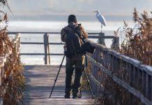 amo-ser-fotografo-blog-Quer aprender mais sobre fotografia Nikon, Olympus e Leica têm cursos gratuitos